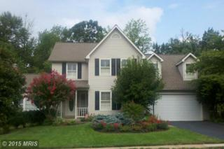 6504  Stonedale Lane  , Clifton, VA 20124 (#FX8562230) :: RE/MAX Premier