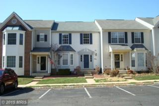 13520  Canada Goose Court  , Clifton, VA 20124 (#FX8585634) :: Your New Home Team Inc
