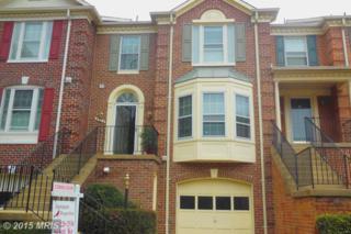 6503  Castine Lane  , Springfield, VA 22150 (#FX8606798) :: Susan Scheiffley & Company Homes