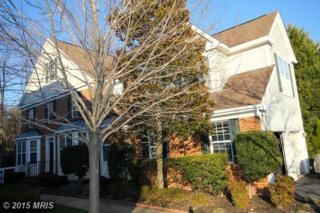 6312  Alderman Drive  , Alexandria, VA 22315 (#FX8608416) :: Susan Scheiffley & Company Homes
