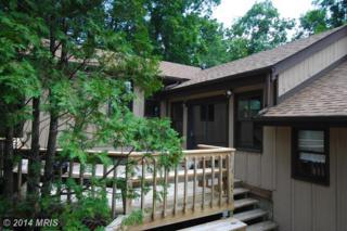 7  Echo Lake Lane  , High View, WV 26808 (#HS8392667) :: Team Waldo Realty