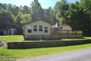 646  Himmelwright Road  , Capon Springs, WV 26823 (#HS8416661) :: Team Waldo Realty