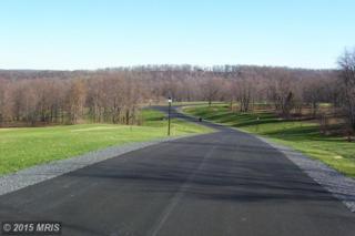 56  Harvest Drive  , Romney, WV 26757 (#HS8544623) :: The Abrams Group of Re/Max Town Center@ Park Potomac
