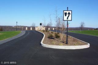 57  Harvest Drive  , Romney, WV 26757 (#HS8544765) :: The Abrams Group of Re/Max Town Center@ Park Potomac