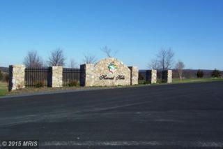 59  Harvest Drive  , Romney, WV 26757 (#HS8544773) :: The Abrams Group of Re/Max Town Center@ Park Potomac