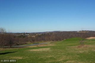 60  Harvest Drive  , Romney, WV 26757 (#HS8544776) :: The Abrams Group of Re/Max Town Center@ Park Potomac