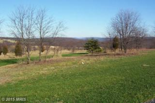 61  Harvest Drive  , Romney, WV 26757 (#HS8544784) :: The Abrams Group of Re/Max Town Center@ Park Potomac