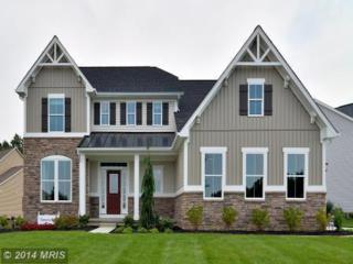 18317  Chelsea Knolls Drive  , Mount Airy, MD 21771 (#HW8414779) :: Charis Realty Group