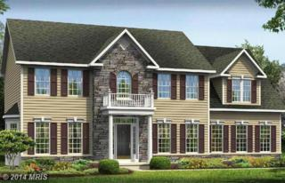 18329  Chelsea Knolls Drive  , Mount Airy, MD 21771 (#HW8414875) :: Charis Realty Group