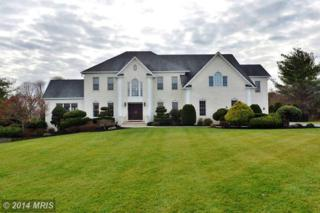 7221  Preservation Court  , Fulton, MD 20759 (#HW8459597) :: Keller Williams Pat Hiban Real Estate Group