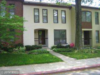 5691  Phelps Luck Drive  , Columbia, MD 21045 (#HW8468865) :: The Maryland Group of Long & Foster