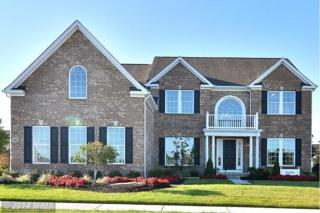 18305  Chelsea Knolls Drive  , Mount Airy, MD 21771 (#HW8484344) :: Charis Realty Group