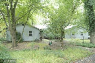 12327  Benson Branch Road  , Ellicott City, MD 21042 (#HW8484734) :: The Maryland Group of Long & Foster