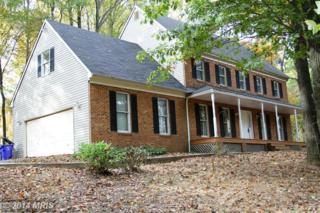 425  Twin Arch Road  , Mount Airy, MD 21771 (#HW8487336) :: Charis Realty Group