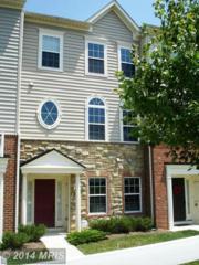 10622  Old Ellicott Circle  6, Ellicott City, MD 21042 (#HW8489295) :: Fulcrum Properties Group