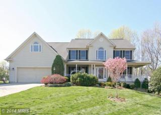 6509  Folded Leaf Square  , Columbia, MD 21044 (#HW8495377) :: The Abrams Group of Re/Max Town Center@ Park Potomac