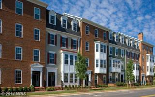 7534  Morris Street  2, Fulton, MD 20759 (#HW8508704) :: The Abrams Group of Re/Max Town Center@ Park Potomac