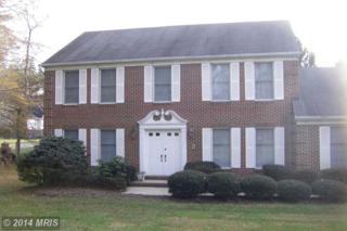 2801  Leaf Shade Drive  , Ellicott City, MD 21042 (#HW8510063) :: Keller Williams Pat Hiban Real Estate Group