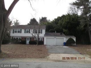 5164  Darting Bird Lane  , Columbia, MD 21044 (#HW8549687) :: Keller Williams Pat Hiban Real Estate Group