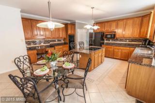 12379  Pleasant View Drive  , Highland, MD 20777 (#HW8567276) :: Keller Williams Pat Hiban Real Estate Group