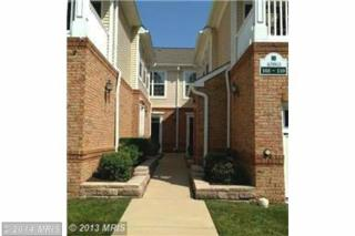 43920  Hickory Corner Terrace  108, Ashburn, VA 20147 (#LO8457236) :: The E4Realty Group
