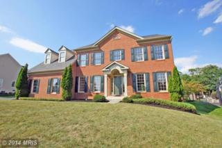 43058  Valle Ducale Drive  , Ashburn, VA 20148 (#LO8461273) :: Your New Home Team Inc