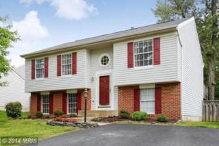 20717  Cross Timber Drive  , Ashburn, VA 20147 (#LO8462423) :: Your New Home Team Inc