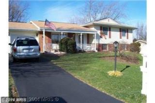 519  Sterling Boulevard  , Sterling, VA 20164 (#LO8468909) :: The Maryland Group of Long & Foster