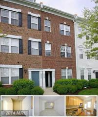 42499  Rockrose Square  , Ashburn, VA 20148 (#LO8469800) :: The Abrams Group of Re/Max Town Center@ Park Potomac