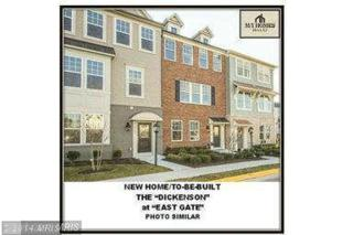 25623  Pleasant Valley Road  , Chantilly, VA 20152 (#LO8484400) :: The E4Realty Group