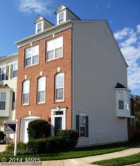 43845  Tattinger Terrace  , Ashburn, VA 20148 (#LO8489144) :: The E4Realty Group