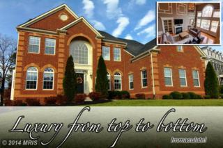 42678  Gulicks Landing Court  , Ashburn, VA 20148 (#LO8497502) :: Susan Scheiffley & Company Homes