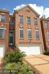 18514  Bear Creek Terrace  , Leesburg, VA 20176 (#LO8508994) :: The Abrams Group of Re/Max Town Center@ Park Potomac