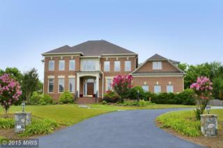 20559  Wildbrook Court  , Ashburn, VA 20147 (#LO8543943) :: The E4Realty Group