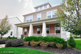 23102  Bronstein Lane  , Ashburn, VA 20148 (#LO8567962) :: Your New Home Team Inc