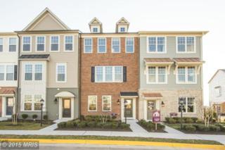25558  Feltre Terrace  , Chantilly, VA 20152 (#LO8587623) :: Coldwell Banker Elite