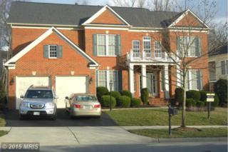 19028  Kipheart Drive  , Leesburg, VA 20176 (#LO8591134) :: LoCoMusings