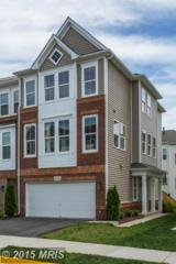 21766  Harroun Terrace  , Ashburn, VA 20147 (#LO8636703) :: The Greg Wells Team