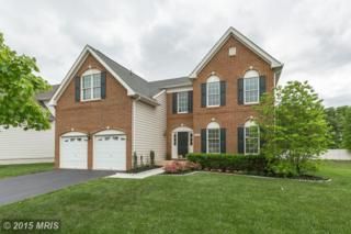 20005  Blackwolf Run Place  , Ashburn, VA 20147 (#LO8638360) :: The Greg Wells Team