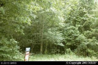 Young's Cliff Road  , Sterling, VA 20165 (#LO8647858) :: Browning Homes Group