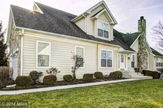 20036  Valhalla Square  , Ashburn, VA 20147 (#LO9005195) :: Your New Home Team Inc