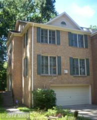 12010  Saw Mill Court  , Silver Spring, MD 20902 (#MC8443768) :: The Abrams Group of Re/Max Town Center@ Park Potomac