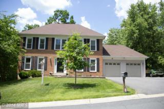 9  Peach Leaf Court  , North Potomac, MD 20878 (#MC8463594) :: The Abrams Group of Re/Max Town Center@ Park Potomac