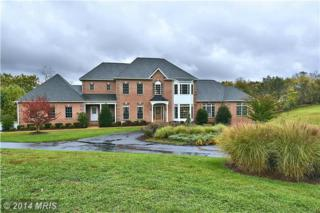 25107  Highland Manor Court  , Damascus, MD 20872 (#MC8482562) :: The Abrams Group of Re/Max Town Center@ Park Potomac
