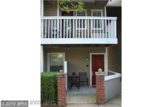 5704  Chapman Mill Drive  150, Rockville, MD 20852 (#MC8487045) :: The Abrams Group of Re/Max Town Center@ Park Potomac