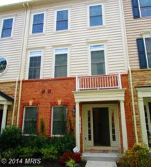 17804  Millhaven Terrace  , Germantown, MD 20874 (#MC8493225) :: The Maryland Group of Long & Foster