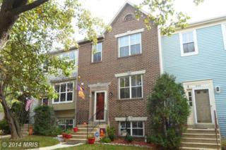 18125  Homeland Drive  , Olney, MD 20832 (#MC8493777) :: Fulcrum Properties Group