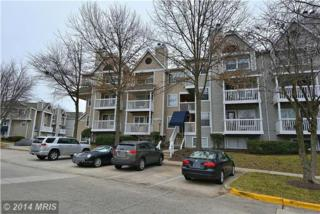 10819  Hampton Mill Terrace  200, Rockville, MD 20852 (#MC8518328) :: The Speicher Group & RE/MAX Realty Centre