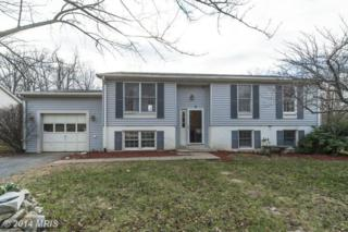 8112  Shady Spring Drive  , Gaithersburg, MD 20877 (#MC8521026) :: The Abrams Group of Re/Max Town Center@ Park Potomac