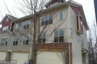 3413  Snow Cloud Lane  , Silver Spring, MD 20904 (#MC8563079) :: The Abrams Group of Re/Max Town Center@ Park Potomac